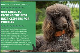 Andis Poodle Chart 8 Best Professional Hair Clippers And Blades For Poodles