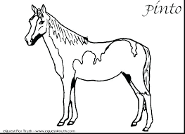 Printable Horse Colouring Pages Free Carousel Horse Coloring Page