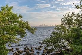 Ballast Point Park Tampa From Ballast Point Park Tampa From Ballast Point Par