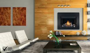 napoleon wood fireplace main image napoleon napoleon wood stove insert reviews napoleon wood fireplace