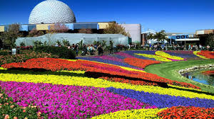 strolling and nibbling through epcot international flower garden festival