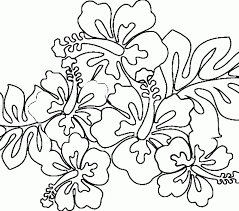 Small Picture Hawaiian Coloring Pages Best Coloring Pages adresebitkiselcom