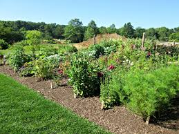 Small Picture Jerry Fritz Garden Design New Year New Seeds How We Plan our