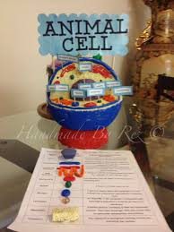 animal cell project ideas middle school. This Is Good Example For Animal Cell Project SCIENCE PROJECT Pinterest Science Projects And School Inside Ideas Middle