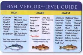 High Mercury Fish Chart Mercury In Fish Pellets Shift To Environment