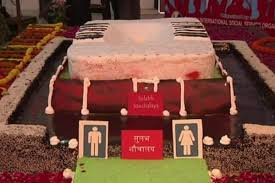 World Toilet Day 2014 Celebrated With Cake Shaped Like An Indian