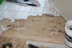 removing porcelain tile on stapled and glued suloor img 5104 jpg