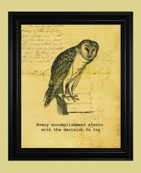 owl with quote | Tumblr