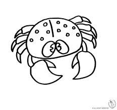 Disegno Di Stella Marina A Colori Per Bambini Avec Stelle Cadenti