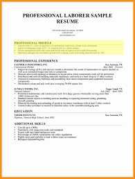 Information Technology Professional Resume Examples Examples Of A Profile For A Resume How To Write A Professional 11