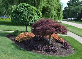 Small Picture 12 Cheap Landscaping Ideas Budget Friendly Landscape Tips for
