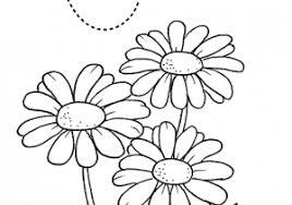 Come Disegnare Una Rosa 16 Passaggi Illustrato Con Fiori Disegni