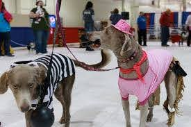 CANCELED - Columbus Pet Expo