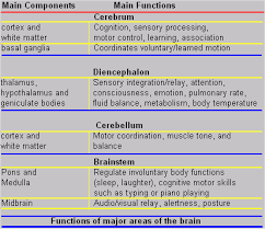 41 Reasonable Cognitive Functions Chart