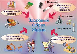 Доклад для детей на тему здоровый образ жизни znak k ru Демонстрационный материал для дошкольников по теме одежда