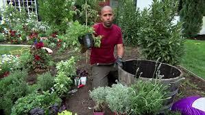 L Add Plants To Soil
