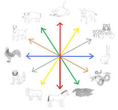 Chinese Animal Compatibility Chart The Tiger In The Chinese Zodiac Compatibility Chart Reading