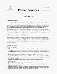 Summary In A Resume Beautiful Professional Summary A Resume Free