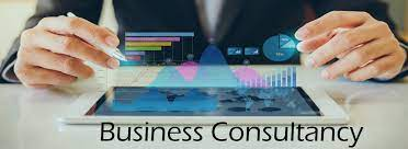 Business Consultancy Services in Telangana   V2 IT Solutions