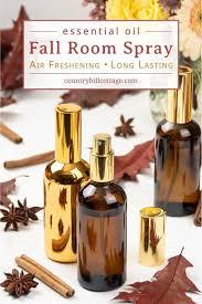 natural fall air freshener diy room