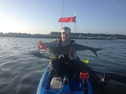 Citation Bluefish This Morning Kayakfishing