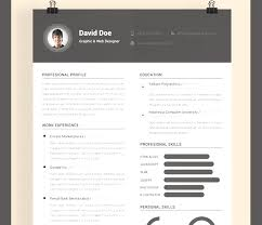 Simple Photoshop Resume Templates On Professional Resume Template