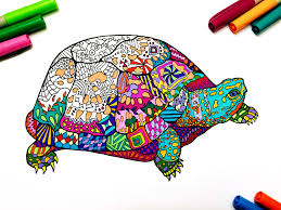 Small Picture Box Turtle PDF Zentangle Coloring Page