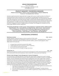 Resume Templates For Project Managers With Engineering Manager