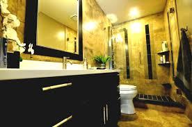 Indianapolis Bathroom Remodeling Remodel Bathroom From Tub To Shower Free Bathroom Remodel Shower