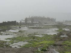 25 Best Corsons Inlet Ocean City Nj Images Ocean City Nj