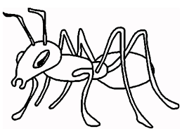 Small Picture Free Printable Ant Coloring Pages For Kids Ant Coloring Pages