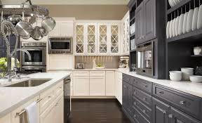 Fancy Kitchen Cabinet Knobs Kitchen Omega Kitchen Cabinets Home Interior Design