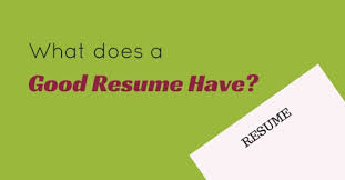 What Does A Good Resume Have Important Points To Include Wisestep