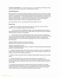 Resume Sample Qualifications Summary New Resume Samples Customer