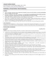Resume Zapper 2