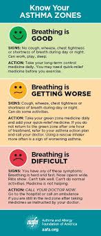 Asthma Zone Chart Find Out If Your Home Is Asthma And Allergy Friendly With