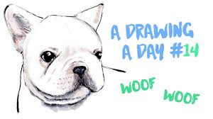 bulldog puppy drawing. Delighful Puppy French Bulldog Puppy Drawing Timelapse  A DRAWING DAY 14 In Drawing