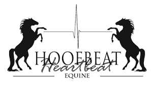 Alberta Equine Photographer | Calgary | Hoofbeat To Heartbeat