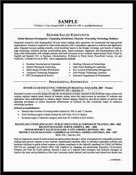 Gallery Of Resume Title Examples