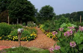 Small Picture Why Plant A Sustainable Garden Journal Garden Design Montreal