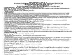 Internal Auditor Resume Objective Internal Control Manager Resume Objective Internal Auditor Resume 73