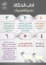 هل تعرف آداب ذبح الأضحية؟ • مصلحون