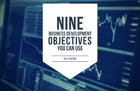 nine business development objectives you can use nine business development objectives you can use 2017 edition