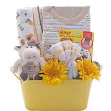 organic baby gift baskets