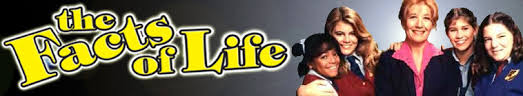 Image result for the facts of life tv show