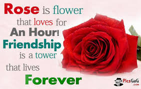 Beautiful Roses With Friendship Quotes Best of Beautiful Rose Flowers With Friendship Quotes Marymar