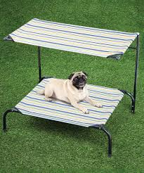 vintage outdoor dog bed with canopy