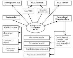 Схема структура оон visual data journal организационная структура Структура оон схемы