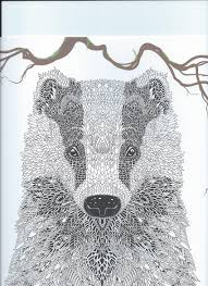 From The Coloring Book The Menagerie Animal Portraits To Color