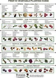 When To Plant Vegetables Chart Growing Herbs Chart When To Plant Vegetables Chart Http
